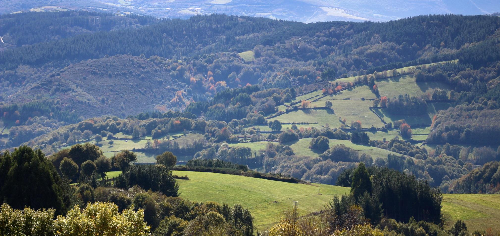 paisaxe, medio natural, natureza