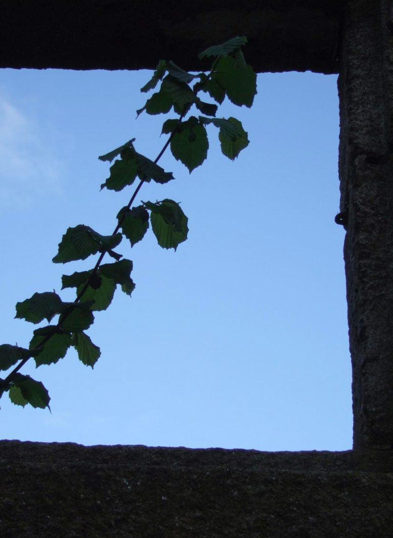 despoboamento, rural, Ourense.